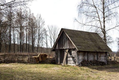 vikingagård  story  sweden