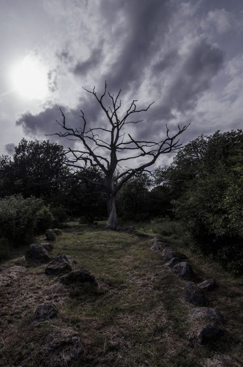 vikings viking burial sweden