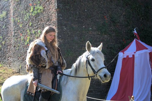 vikings  fantasy  medieval