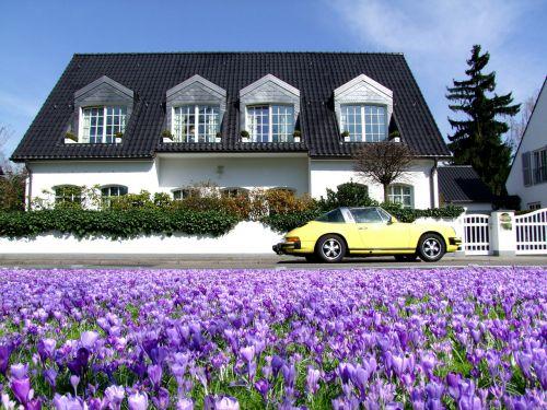 villa home dream home