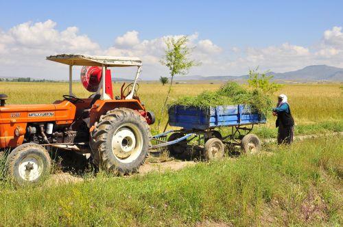 village field tractor