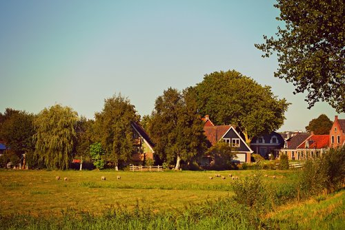 village  houses  meadow