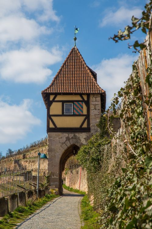vineyard tower middle ages