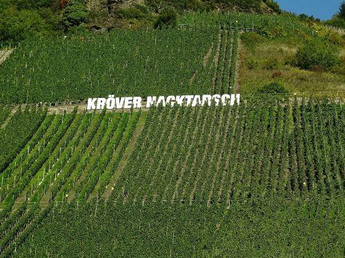 vineyard mosel winegrowing