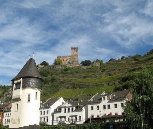 vineyards middle rhine landscape