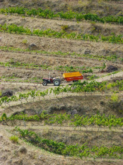 vineyards priorat tractor