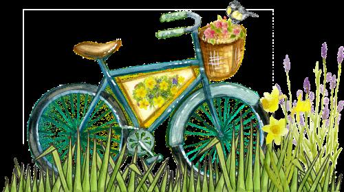 vintage bicycle old