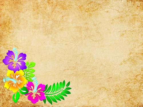 vintage background  texture abstract  flowers wallpapers