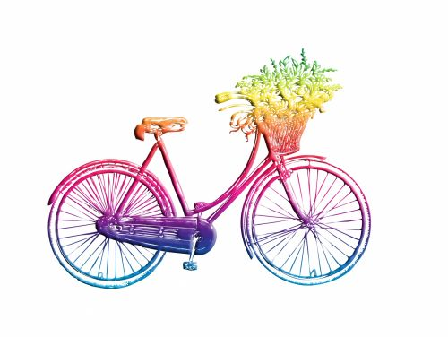 Vintage Bicycle Colorful Clipart