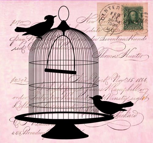 Vintage Birds Cage Script