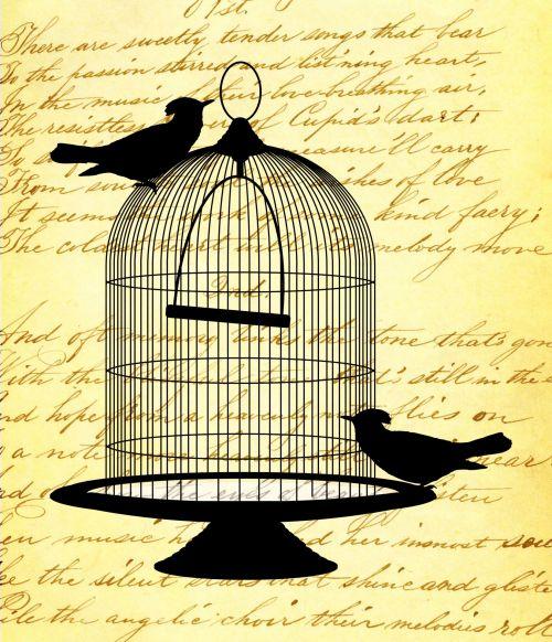 Vintage Birds Script Background