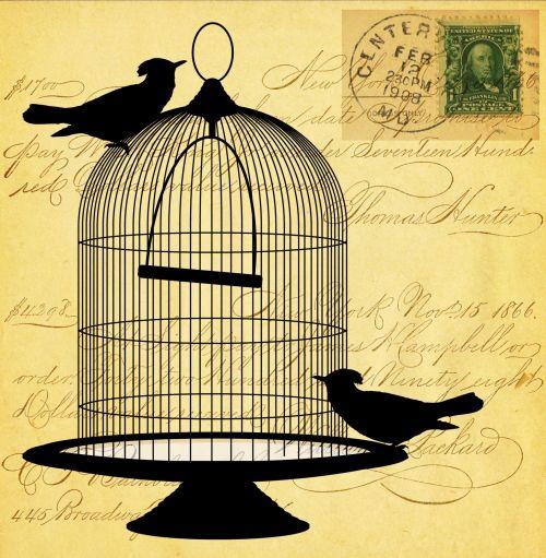 Vintage Birds Script Card