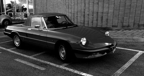 vintage car alfa romeo cabrio