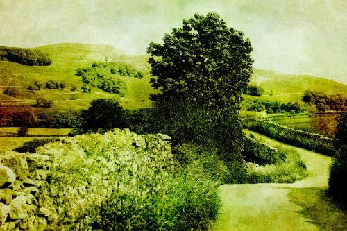 Vintage Country Lane Landscape
