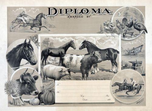 Vintage Diploma For Farming