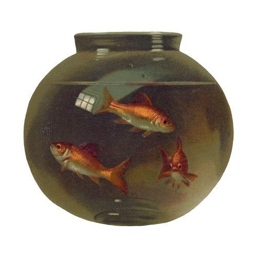 Vintage Goldfish Bowl