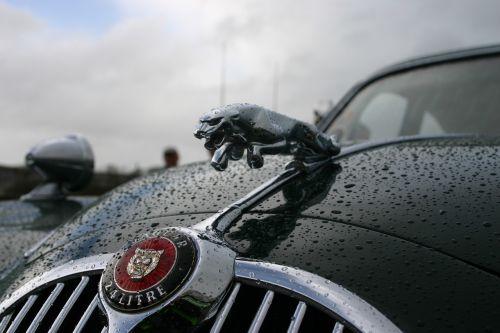 jaguar car vintage