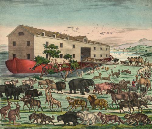 Vintage Noahs Ark Illustration