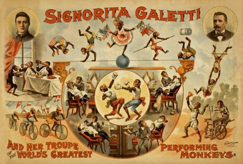 Vintage Performing Monkeys Poster
