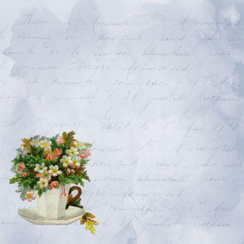 Vintage Teacup Script Background
