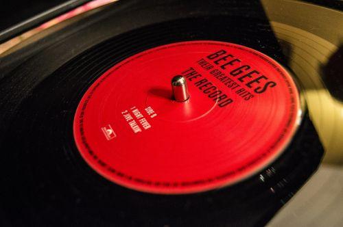 vinyl music needle
