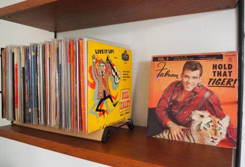 vinyl analog records