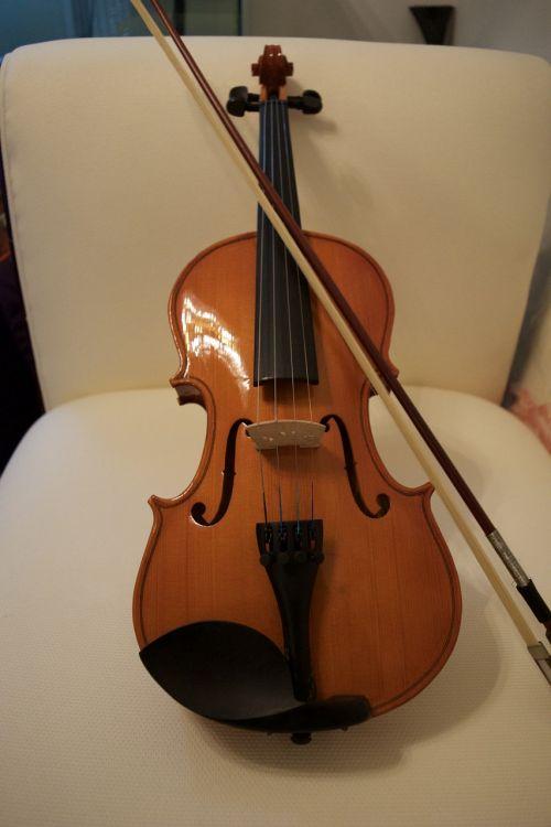 violin bow string