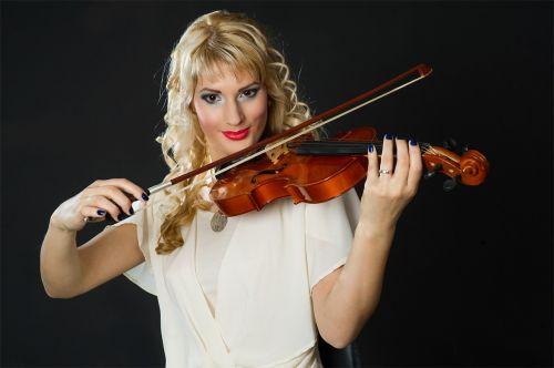 violin musician violinist