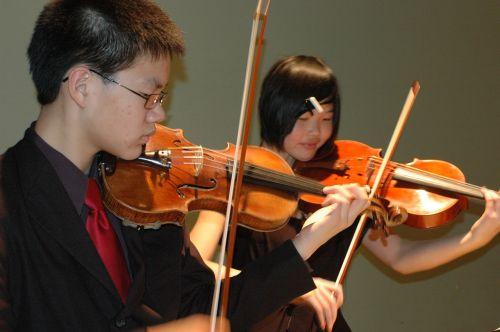 violin music musician