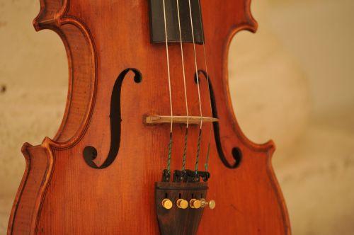 smuikas,instrumentas,muzika,muzikinis,klasikinis,akustinė,simfonija,orkestras