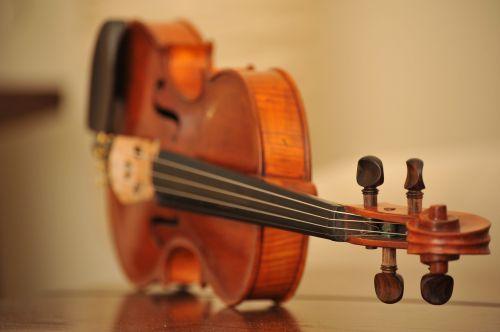 violin instrument music