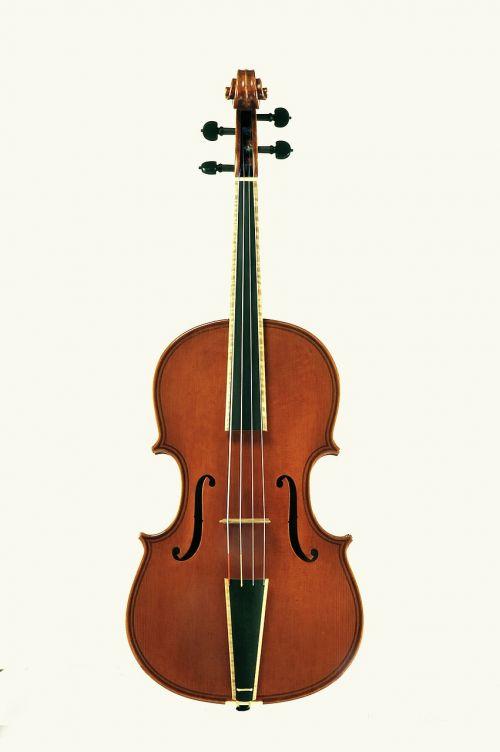 violin stringed instruments