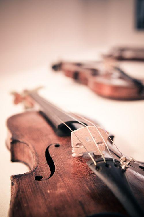 violin violins classical music