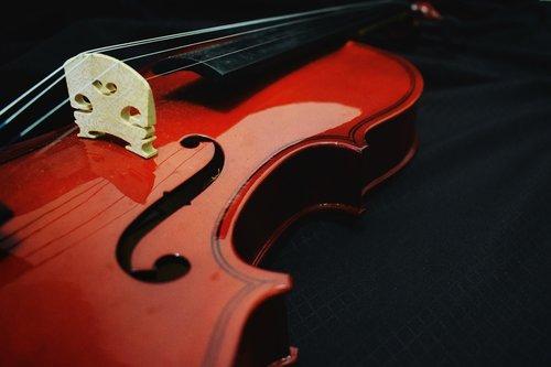 violin  music  design