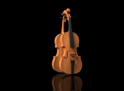 violin  violin on black background  music