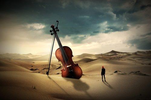 violin  violin bow  instrument