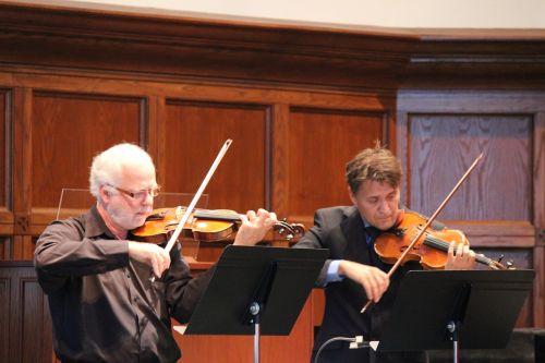 smuikas,orkestras,muzika,instrumentas,stygos,simfonija,klasikinis,koncertas