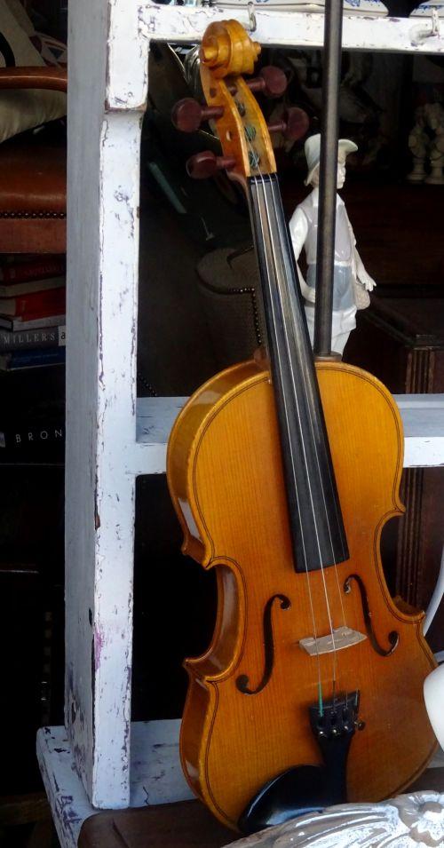 Violin Stringed Instrument