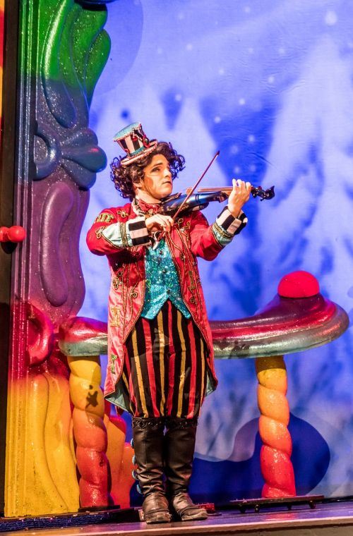 violinist performer cirque du soleil