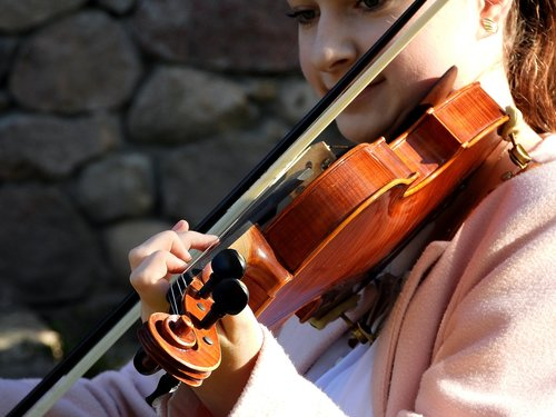 violinist  violin  playing the violin