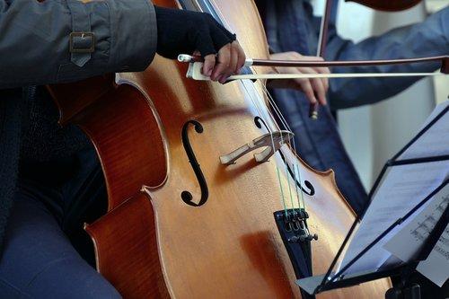 violinist  cellist  artist