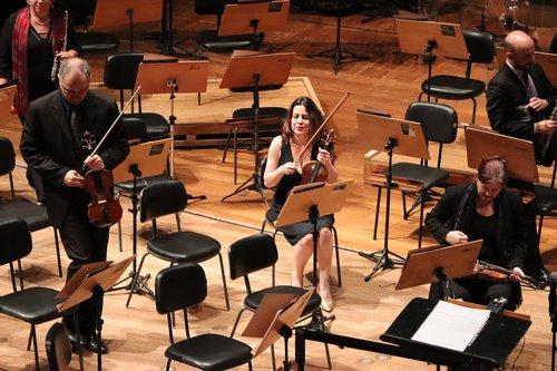violinist  são paulo  theatre