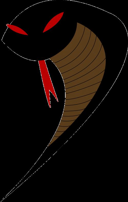 viper snake venom