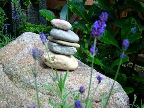 aplankyti akmenis,foundling,uolos ir levandos