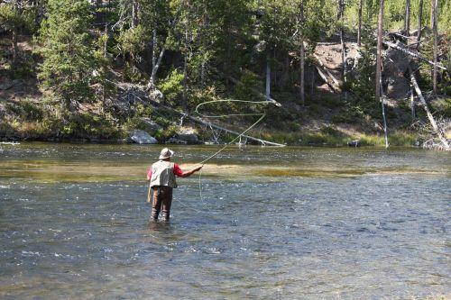 visser flow nature
