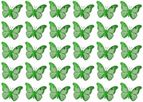fonas, apdaila, ornamentu, spalva, kūrybingas, modelis, tapetai, iliustracija, drugeliai, žalias, drugelis žalias
