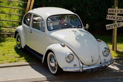 volkswagen beetle  car  vintage