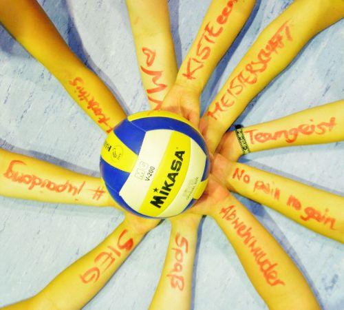 volleyball team team sport