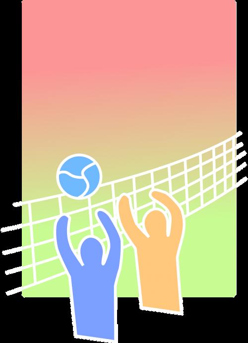 volleyball beach volley sport