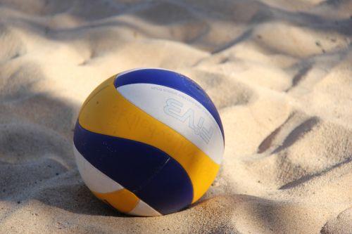 volleyball sport team sport